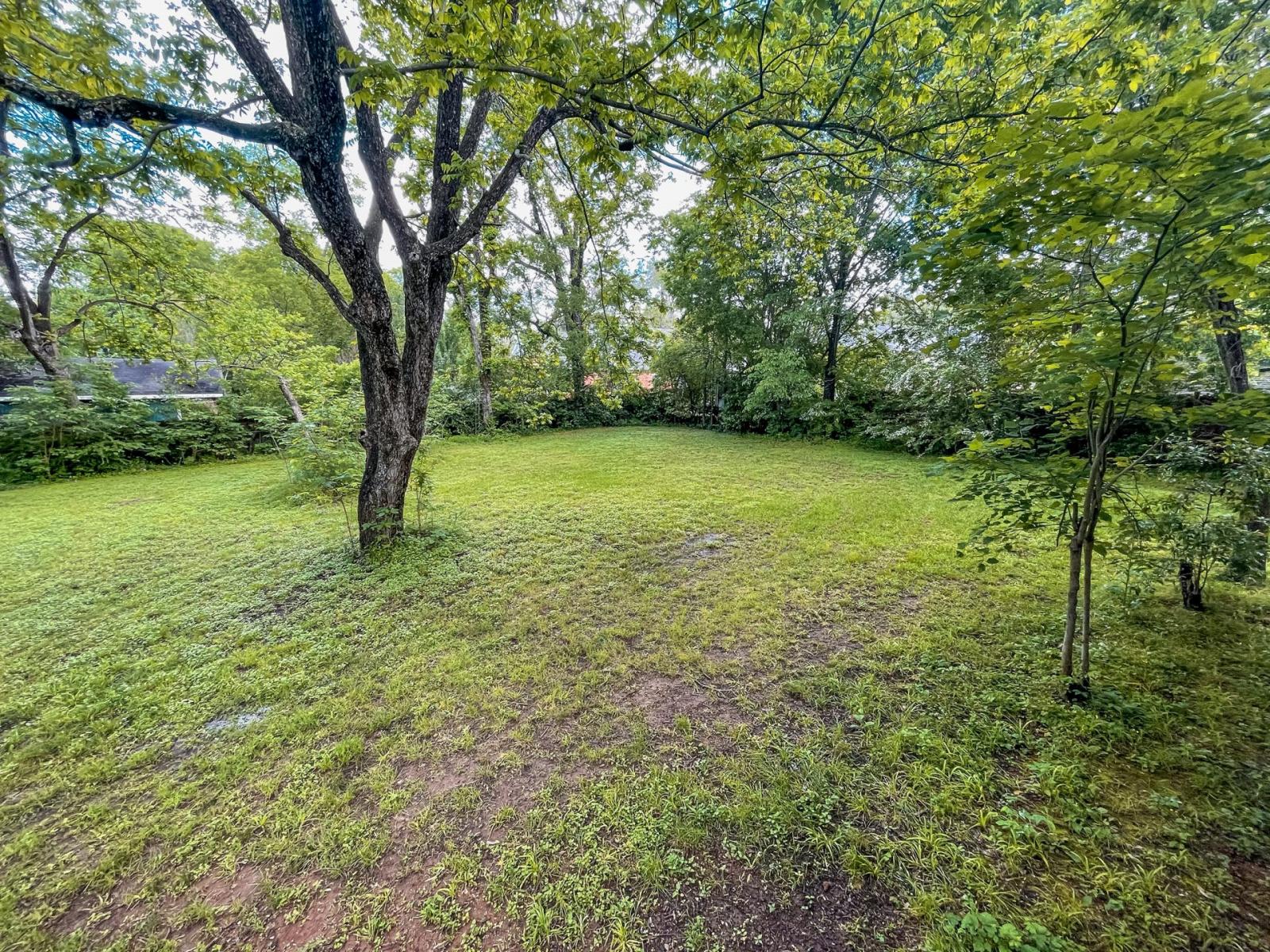 y-backyard2-207park