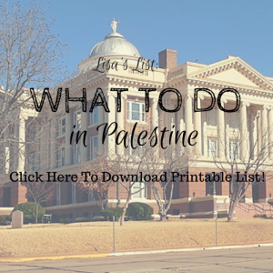 what to do in palestine tx