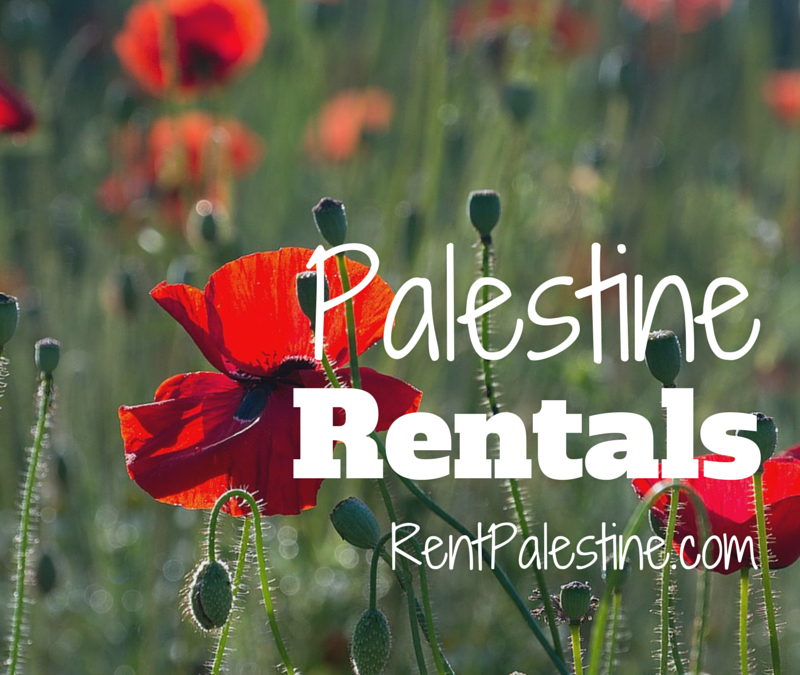 Palestine Rentals – My Openings as of July 14, 2015
