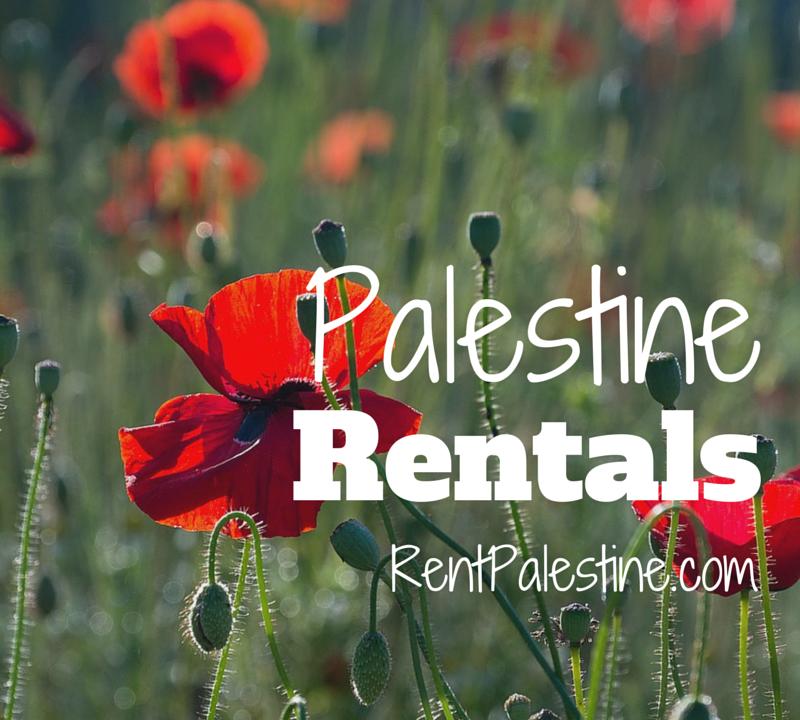 Palestine Rentals – My Openings as of July 14, 2015
