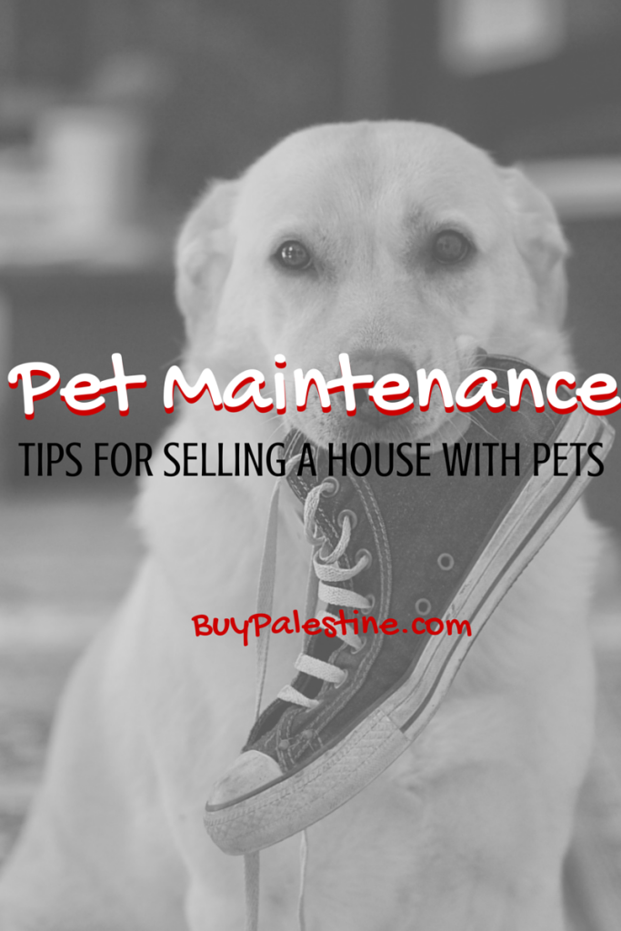 Tips selling your house with pets palestine tx