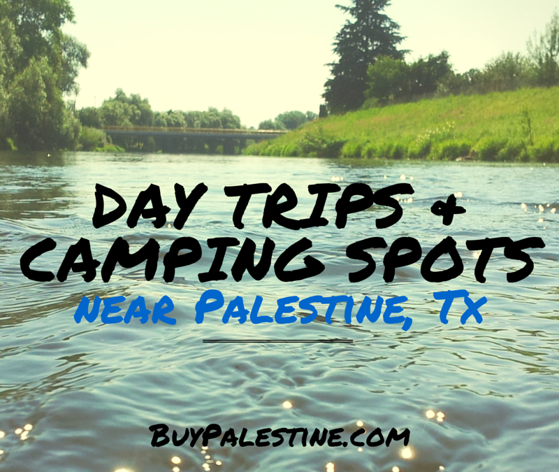 day trips and camping spots near palestine tx