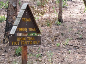Tejas Timber Trailhead at Mission Tejas SP. (photo also from our 2011 visit)