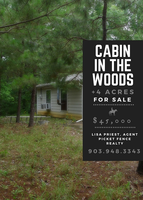 Real Estate Property Highlight: Cabin in the woods on 4 Acres in Neches, TX