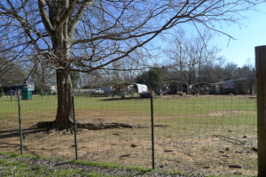 Land/ Animal Farm for Sale