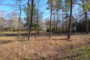 1.879 Acre Lot Palestine Tx 75801 - Land for Sale