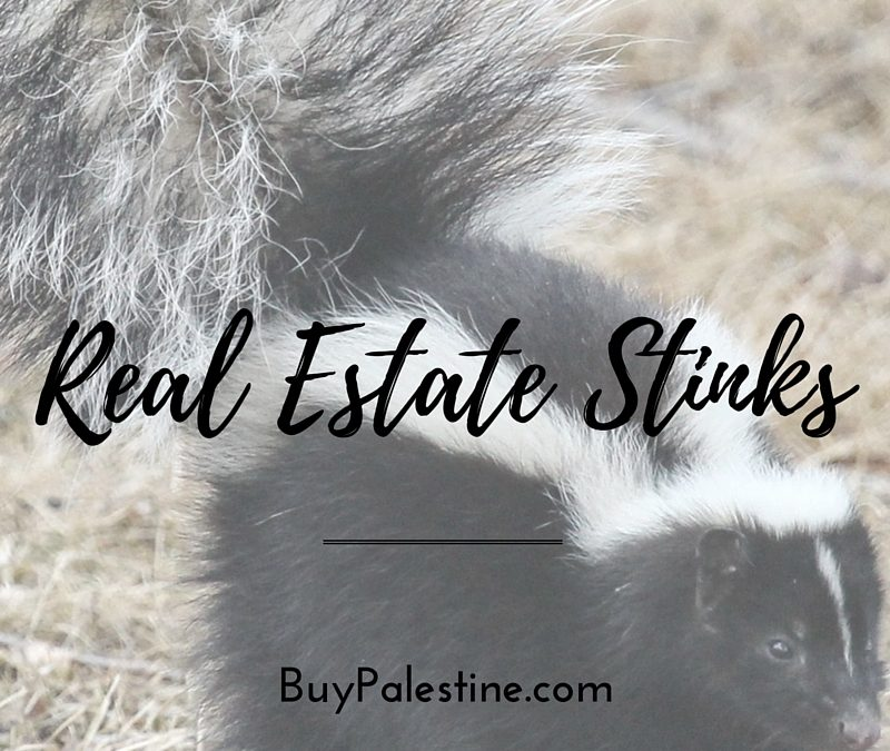 Real Estate Stinks: Common Odors that Stop a Home Sale