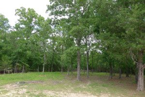 2 Bedroom 2 Bath on 9.2 Acres - House with Land for Sale